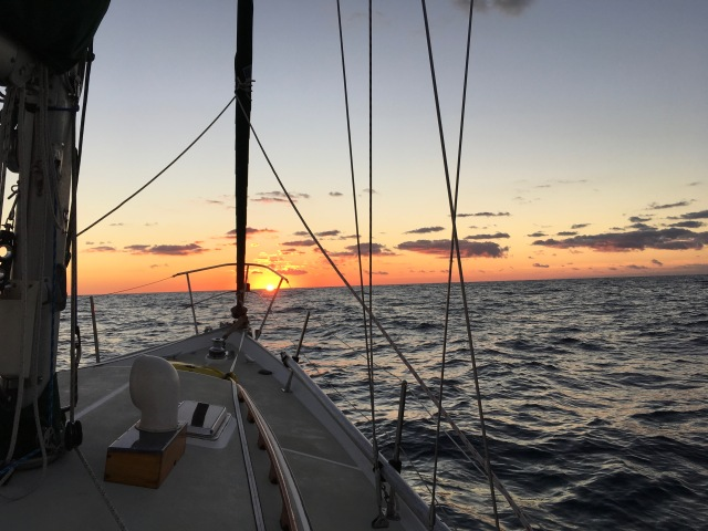 Have Wind Will Travel | Curious about cruising? Come aboard  | Page 3
